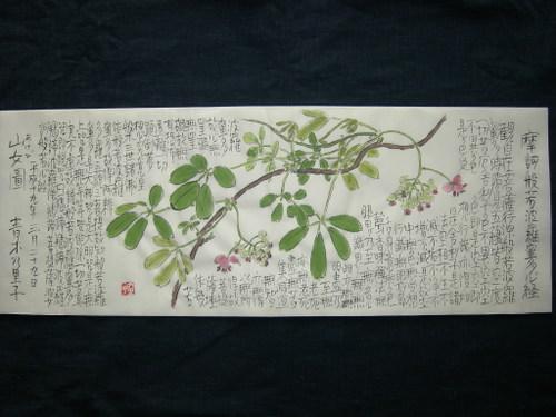 山女(あけび)図 3/29