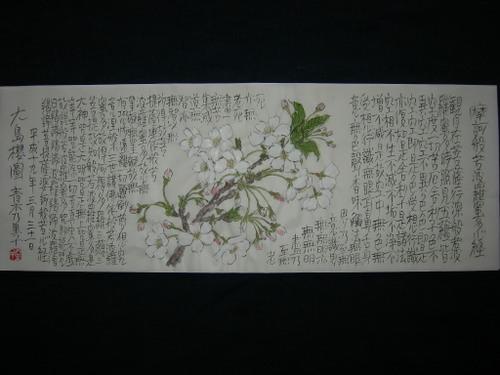 大島桜図 3/31