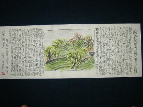 茶畑図 4/22
